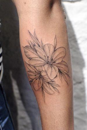 Lirios #lily #fineline #botanicaltattoo