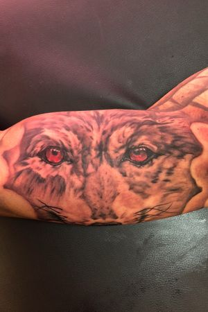Wolf on the inner bicep.
