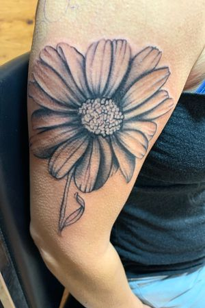 Lone Daisy #flowertattoodesigns #daisytattoo