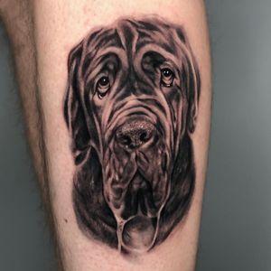 #dog #dogportrait #realism #blackandgrey #portrait #indianapolis #cronetattoos #joecrone