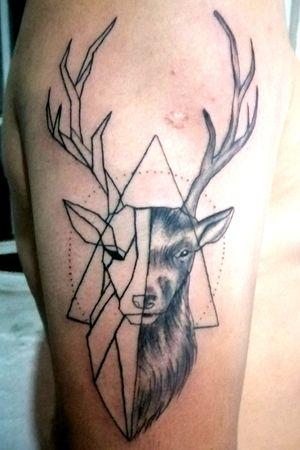 Deer 🦌