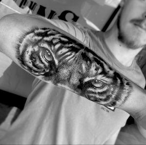 #tiger #realism #blackandgray