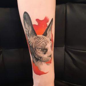 Tatuaj vindecat