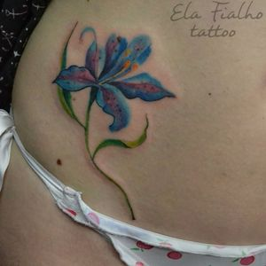 Blue lilly #lirio #lilly #color #flower #botanic #botanicaltattoo