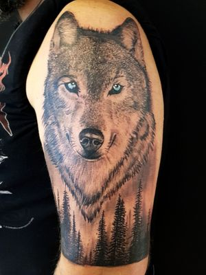 Wolf tattoo done at Old Ink Bucuresti