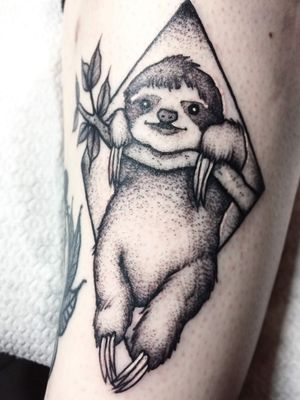 Sloth by Sooz at Owlcat in Aberdeen 😍