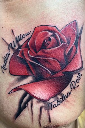 Semirealistic abstract color rose!