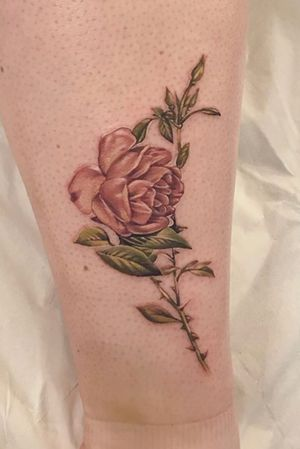 Vintage rose done at Seven Foxes Tattoo