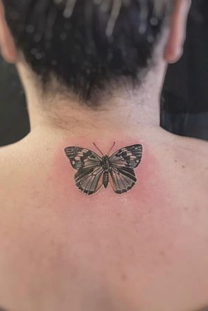 Small butterfly on the back of the neck done at Seven Foxes Tattoo
