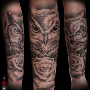 Feminine owl