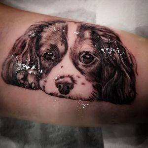 #realistictattoo #tattoo #ink #inked #tattoos #blackandgreytattoo #art #blackandgrey #tattooartist #tattooed #realism #tattooart #realistic #tattoolife #realismtattoo #inkedup #irishinkers #tattooing #tattoooftheday #colortattoo #portraittattoo #tattoostudio #skinartmag #sullen #bishoptotary#skinart #irishtattoonation