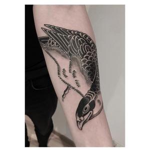#horiokami #hawk #btattooing #blackboldsociety #blacktoptattooing #BLXCKINK #oldlines #tattoosandflash #darkartists #tattoosandflash #topclasstattooing #darkartists #thebesttattooartist #japanesetattoos #irezumitattoo #horimono #tatuaggiogiapponese #orientaltattoos #irezumcolletctive #waterlawtattoobutter #tattoodo #tattoodoambassador