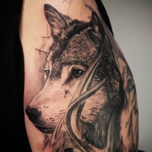 #tattoo #tatts #berlin #deer #deertattoo #armtattoo #inked #tattooartwork #blackandgrey #bestrealistictattoos #tattooedgirl #berlintattoo #paris #paristattoo #inkig #cooltattoos #berlintattooers #tattoolife #cheyennepen #d_world_of_ink #tattooaddict #tattoolife #berlintattooartist #tattoo_art_worldwide #cerf #cerftattoo #blackwork #blackworkers #kwadron #intenzeink
