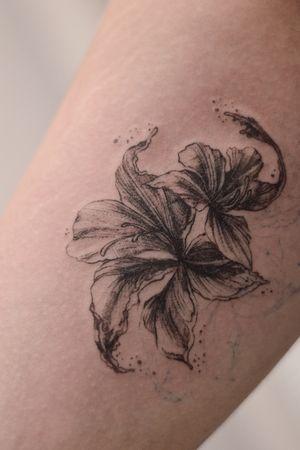 Bauhinia fineline botanical tattoo