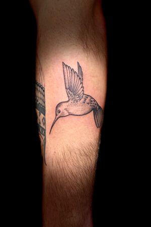 Hummingbird. #hummingbird