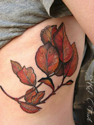 #botanicaltattoo #leaftattoo #leavestattoo #ribtattoo #chicago #naturetattoo #fall #watercolortattoo
