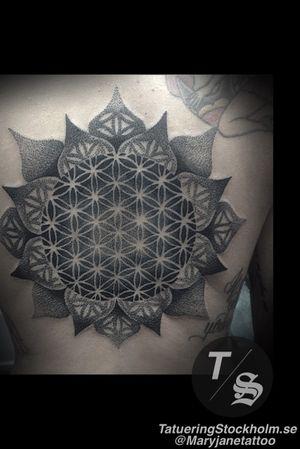 Flower of life back piece mandala dotwork tattoo #mandala #sacredgeometry #floweroflife #backpiece #maryjane #maryjanetattoo #tatueringstockholm #geometric #geometry