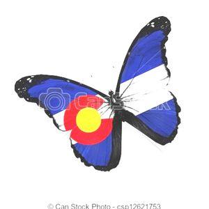 Colorado glad butterfly