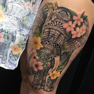 #elephant #elephanttattoo #polynesian