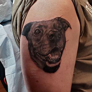 Dog portrait #athensga #athenstattoo #athenstattoos #normaltown #petportrait #portraittattoo
