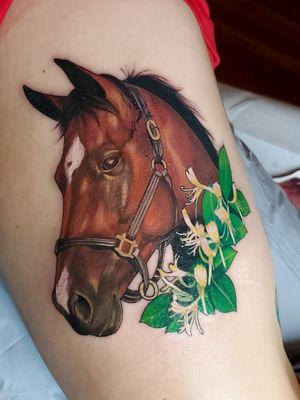 Color realism horse