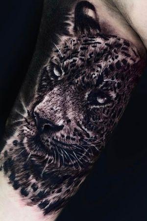 Jaguar done by me! #kyledevries #animaltattoo