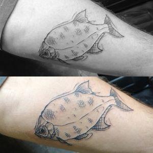 #fishtattoo #fish #sketch #sketchstyle #sketchtattoo