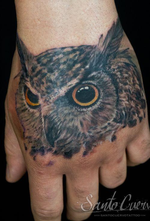 Realistic colour owl