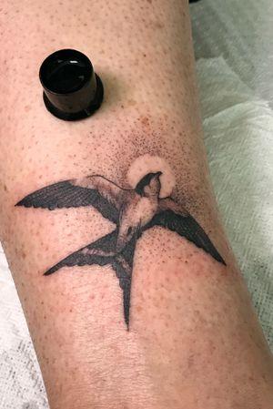 Little bird, fresh in the lower leg