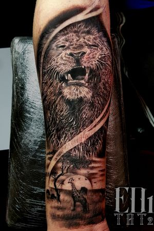 Lion tattoo done by me, if you want something similar for a good price get in contact ✌