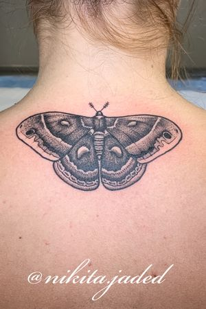 Dot work moth tattoo on the name of the neck
