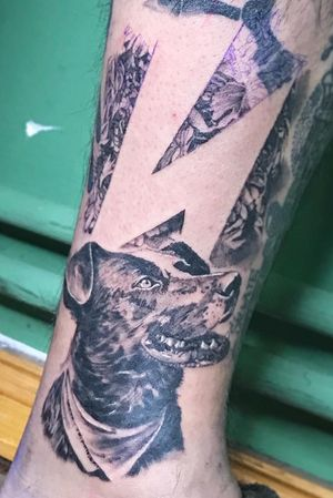 An amazingly fun session to finish the leg of my super talented bro @elguztoktattoo ! Thank you so much for trusting me! Check out his amazing art!. . . . . . . . #negromatapacos #negromatapacostattoo #realism #symbolictattoo #chile #tattoo #tattoos #ink #inked #tattooartist #tattooed #tattooart #realistictattoos #tattooing #berlintattoo #tätowierung #tattoolove #blackandgreytattoo #chiledesperto #tattoodesign #tatuajes #tattooideas #blackandgrey #legtattoo #dogtattoo #leaftattoo #badbrains #badbrainsofficial #lightningtattoo #riotdog