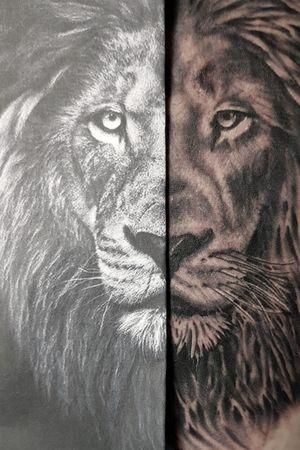 Lion Tattoo - Leg