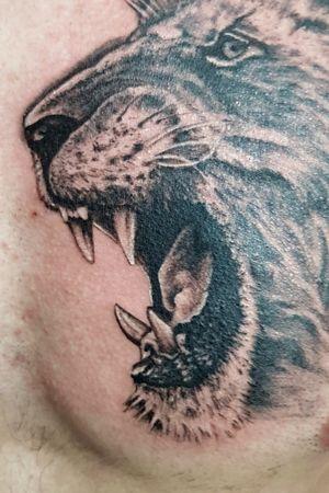 Lion - Details
