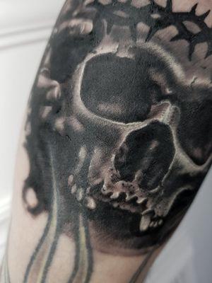 Skull - Close Up