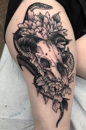 Goat skull and snake. Black and grey