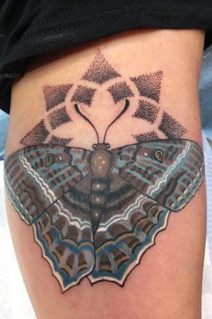 Moth on inner arm