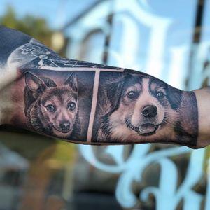 Realism pet tattoo by Veghea Adi  aka dirtyblacktattoo #VegheaAdi #dirtyblacktattoo #realism #blackandgrey #pet #petportrait #dog #animal