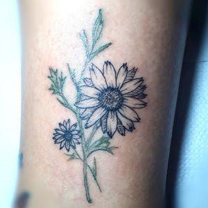 #daisytattoo #tattoomargarida #flowertattoo