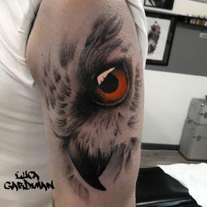 🦉 #tattoodo #owl #lucagardiman
