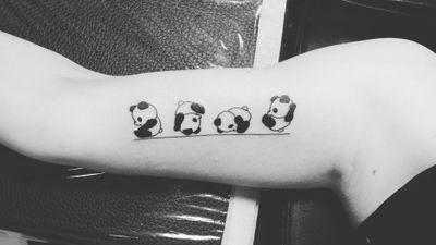 #panda #animals