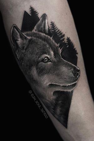 #wolf #blackandgray #elensoul