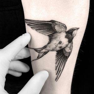 #tattoodesign #tattooflash #tattoodo #tattoos #blackwork #tattooidea #detailed #detail #singleneedle #swallow #sculpture #contemporary #portrait #blackansgrey #blackwork #dotwork #bird