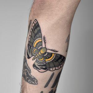 #oldschool #moth #butterfly