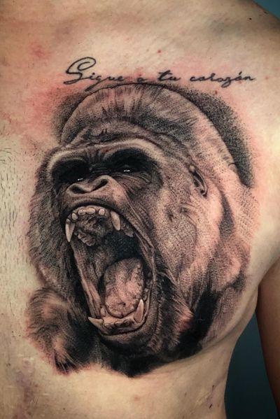 Gorilla chest tattoo @jordancampbellart #gorilla #realistic #fineline #3rl #3rlonly