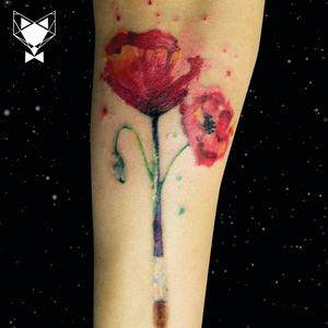 Customized design paint your poppies!