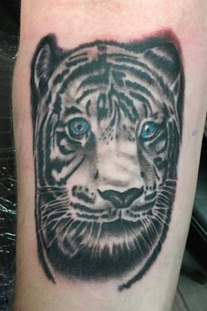 Had a lot of fun doing this tiger tattoo. First session on this sleeve.