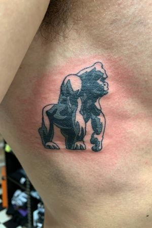 gorilla silverback tattoozurich