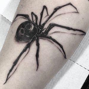 #spider #spidertattoo #blackandgrey #blackwork #blacktattoo #black #whiteink #grey #Realism #realismtattoo #realistic #realistictattoo #arm #armtattoo #forearm #forearmtattoo #melbourne #melbournetattoo #melbournetattooer #melbournetattooist