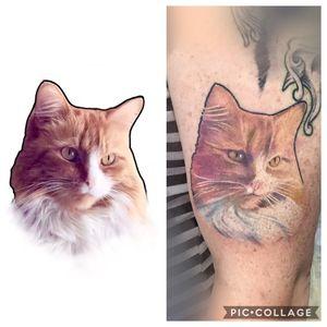 Tattoo from Mike Matthews